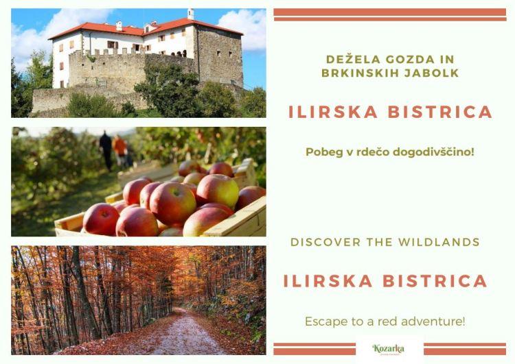 razglednica Ilirska Bistrica