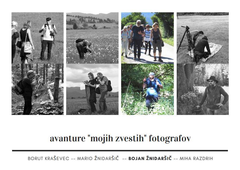 moji fotografi _bojan
