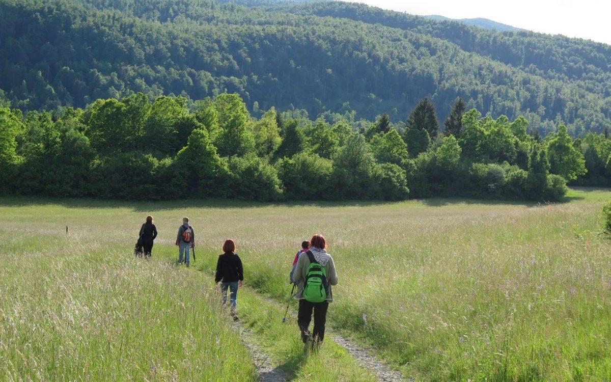 peš v naravo